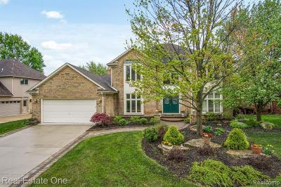 Rochester Hills Single Family Home For Sale: 3079 Kilburn Rd W