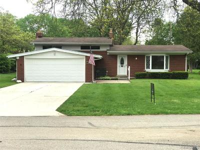 Clinton Township Single Family Home For Sale: 38222 Applegrove St