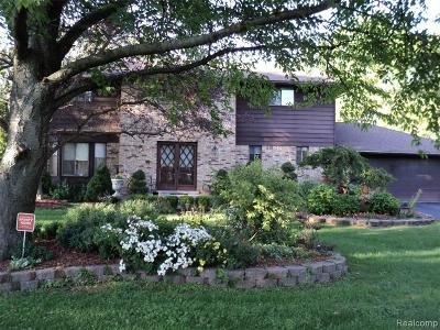 Sterling Heights Single Family Home For Sale: 3501 Leason