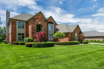 Sterling Heights Single Family Home For Sale: 43133 Vintners Place Dr