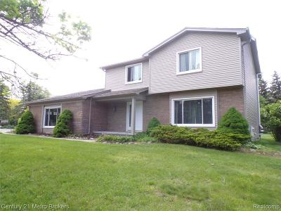 Clarkston Single Family Home For Sale: 6401 Chestnut Hill Crt