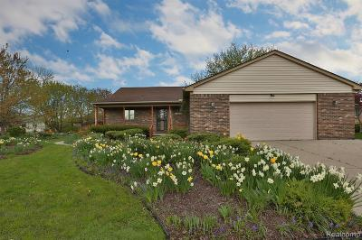 Woodhaven Single Family Home For Sale: 21862 Tiffany Dr
