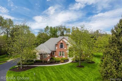 Clarkston Single Family Home For Sale: 7800 Somerhill Ln