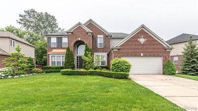 Northville Single Family Home For Sale: 16640 Yellowstone Dr