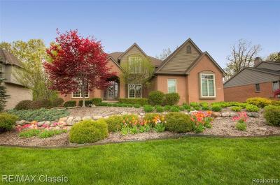 Clarkston Single Family Home For Sale: 8326 Brookstone Ln