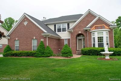 Canton Single Family Home For Sale: 1299 Hendrie