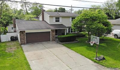 Lake Orion Single Family Home For Sale: 317 Hauxwell Dr