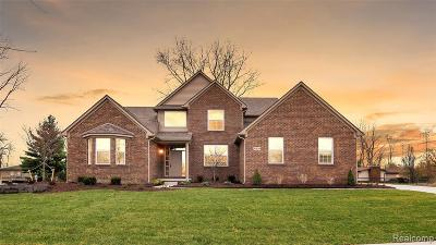Canton Single Family Home For Sale: 47609 Ellery Ln