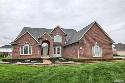 Shelby Twp Single Family Home For Sale: 14257 Mandarin Dr