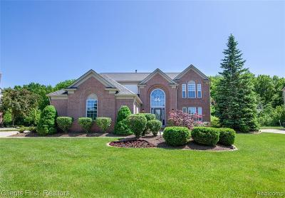 Canton Single Family Home For Sale: 48895 Rockefeller