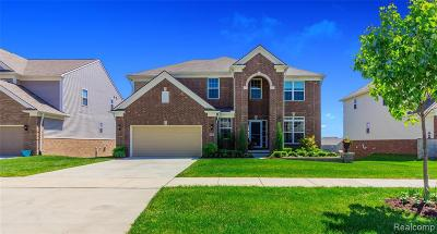 Lake Orion Single Family Home For Sale: 4697 Tanglewood Ln