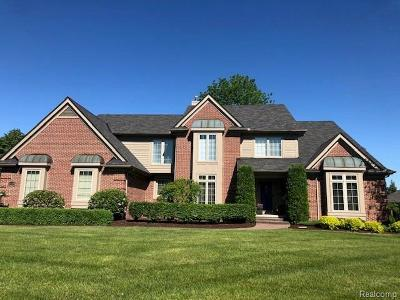 Northville Single Family Home For Sale: 17770 Rolling Woods Cir