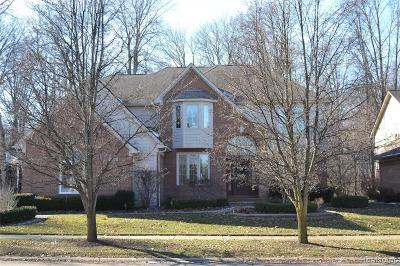 Shelby Twp Single Family Home For Sale: 54035 Aurora Park