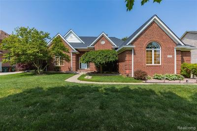 Shelby Twp Single Family Home For Sale: 49723 Golden Lake Dr