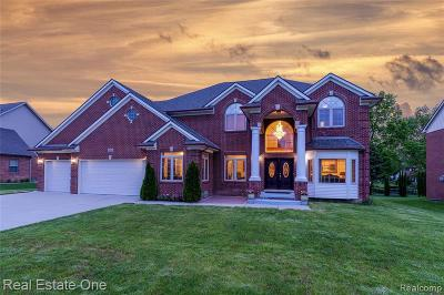 Troy Single Family Home For Sale: 865 Quill Creek Dr