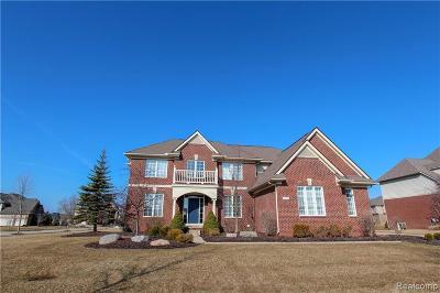 Northville Single Family Home For Sale: 22583 Poppleton Dr
