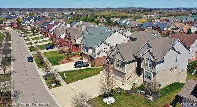 Northville Single Family Home For Sale: 17018 Boulder Dr
