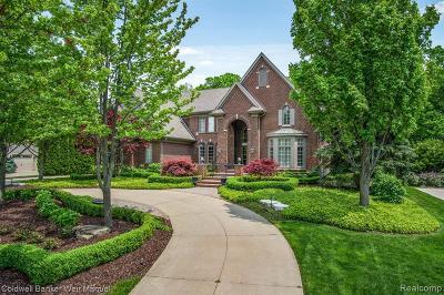 Oakland Twp Single Family Home For Sale: 5689 Kirkridge Trl