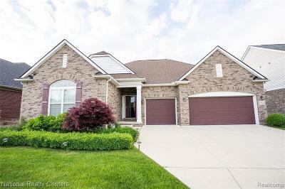 Clinton Township Single Family Home For Sale: 17543 Merganser Dr
