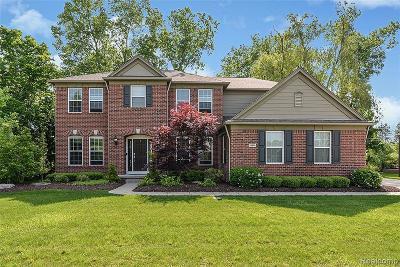 Northville Single Family Home For Sale: 18994 Grande Vista Dr