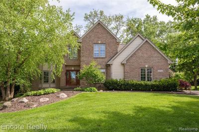 Northville Single Family Home For Sale: 40736 Coachwood Cir
