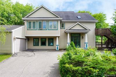 Auburn Hills Single Family Home For Sale: 4019 Bald Mountain Rd