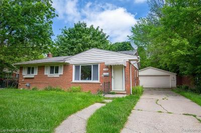 Southfield Single Family Home For Sale: 28494 Selkirk St