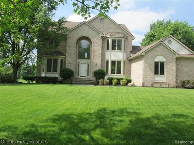 Canton Single Family Home For Sale: 46822 Balboa Rd