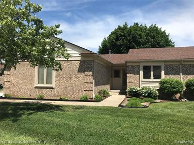 Shelby Twp Condo/Townhouse For Sale: 13829 Birch Tree Way
