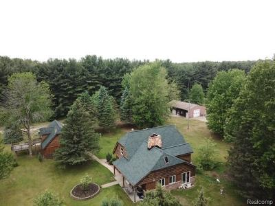Lapeer Single Family Home For Sale: 704 W Barnes Lake Rd