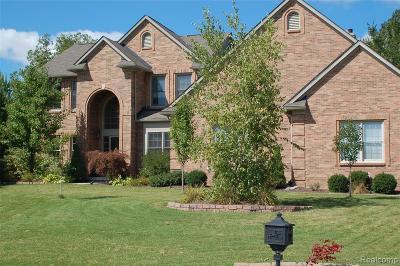 Lake Orion Single Family Home For Sale: 3904 Kaeleaf Rd