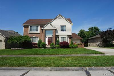 Macomb MI Single Family Home For Sale: $364,900