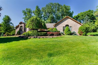Macomb Single Family Home For Sale: 62243 Darren Dr