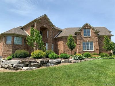 Macomb Single Family Home For Sale: 65831 Windrose Crt