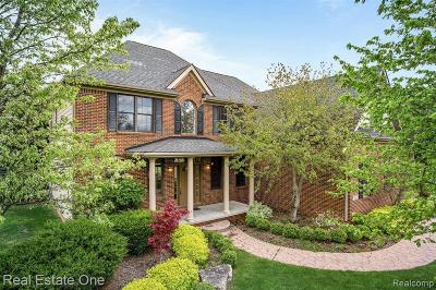 Lake Orion Single Family Home For Sale: 970 Defiance Crt
