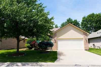 Clinton Township Condo/Townhouse For Sale: 17832 Pointe Cir