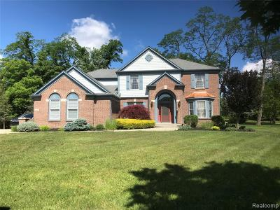 Farmington Hills Single Family Home For Sale: 32574 Oakwood