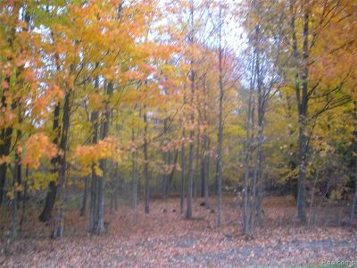 Lapeer Residential Lots & Land For Sale: 13 Intrinsic Ln