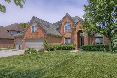 Harrison Twp Single Family Home For Sale: 28027 Lansdowne Dr