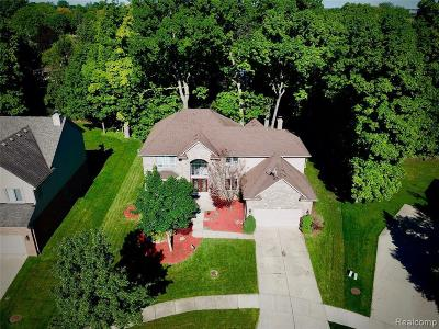 Rochester Hills Single Family Home For Sale: 770 Grovecrest