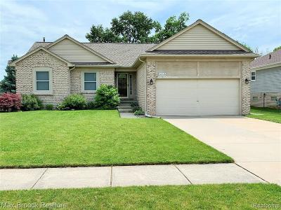 Chesterfield Single Family Home For Sale: 52228 Elm Dr