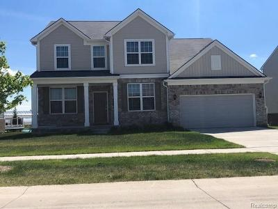Macomb Single Family Home For Sale: 16380 Adelaide Dr