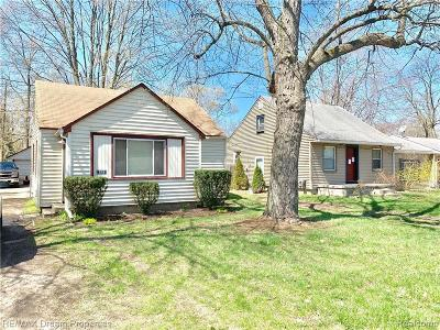 Southfield Single Family Home For Sale: 21581 Indian St