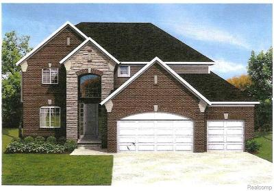 Macomb Single Family Home For Sale: 62811 Hillcrest Dr