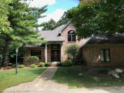 Macomb Single Family Home For Sale: 62020 Kim Crt