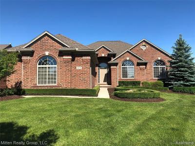Macomb Single Family Home For Sale: 63676 Monticello E