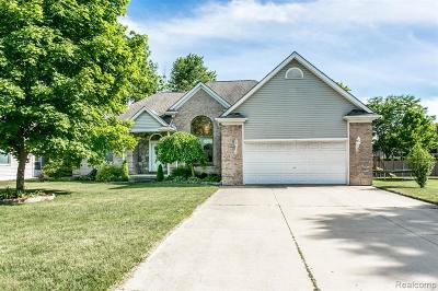 St. Clair Single Family Home For Sale: 635 Saint Andrews