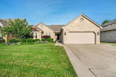 Clinton Township Single Family Home For Sale: 43496 Hillsboro Dr