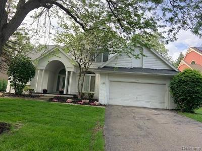 West Bloomfield Single Family Home For Sale: 6282 Lindsay Crt