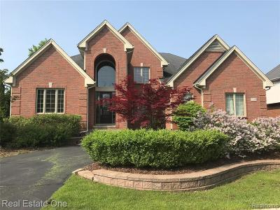 West Bloomfield Single Family Home For Sale: 7398 Carlyle Crossing
